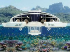 solar floating resort. now this is what I  call a house boat. at least two bed rooms with bath, deck, office, kitchen, tv room and under water observatory