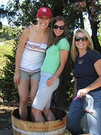Grape stomping at Schweiger Vineyards
