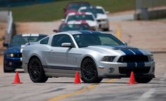 shelby mustang (2)
