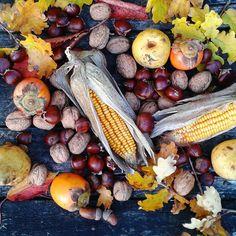 Season's harvest! Chestnuts, persimmons, pears, corn walnuts....