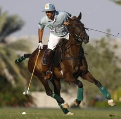 Adolfo Cambiaso, best Polo player ever!