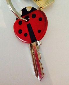 #llaves #funda #ladybug