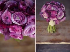#purple #ranunculus #flowers