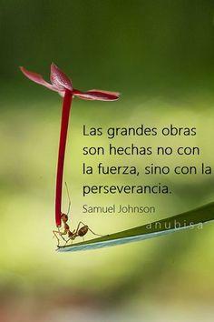 Las grandes obras son hechas con la perseverancia..