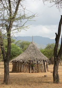 Africa |  Traditional Tsemay house - Omo Ethiopia.  Also known as Tsemako or Tsamay, the Tsemay belong to the lowland east Cushitic family in which the Dassanatch and the Arbore are also part. | © Eric Lafforgue