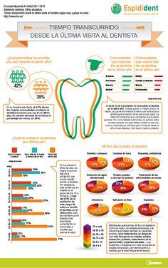 1000+ images about dental study on Pinterest | Dental