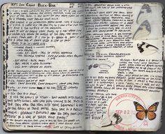 art journal sketchbook. Nature - Butterflies