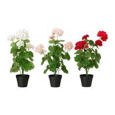 IKEA - FEJKA, Tekokasvi, Luonnollisen näköinen tekokasvi, joka näyttää aina yhtä hyvältä.Hyvä valinta niille, jotka eivät voi hankkia aitoja kasveja, mutta jotka haluavat silti palan luonnon kauneutta kotiinsa.
