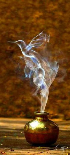 I love it! Some witch with vials that when opened have smoke create whatever animal the essence came from.*PurdyGirl*