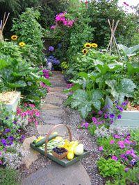 Edible Landscaping with Charlie Nardozzi :: National Gardening Association Veg Garden, Vegetable Garden Design, Fruit Garden, Edible Garden, Garden Paths, Garden Landscaping, Edible Plants, Edible Flowers, Garden Inspiration