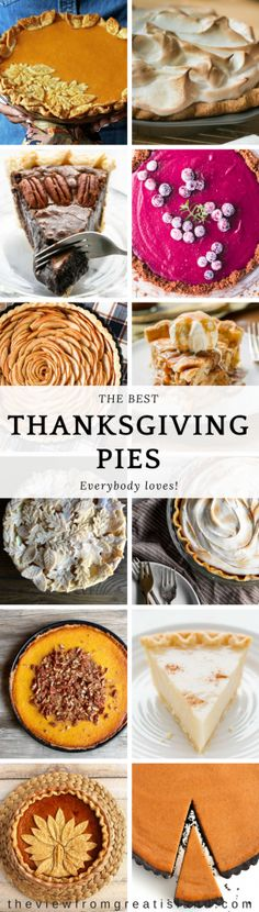 The Best Thanksgiving Pies ~ everything you need to rock your Thanksgiving dessert table, from pumpkin and pecan to cranberry, maple, and more! There are a lot of pie recipes out there, but these are the best! #pie #Thanksgivingpie #pierecipe #holidaypie #pumpkinpie #pecanpie #chocolatepie #coconutpie #cranberrypie #gingernsnapcrust #chocolatecrust #applepie #sweetpotatopie #vodkapiecrust #piecrust #Amishpie #dessert #Thanksgivingdessert #veganpie #glutenfreepie