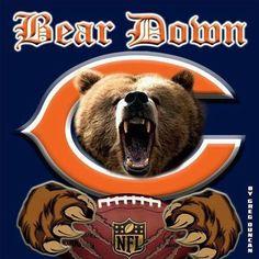 Bears Football, Football Team, Chicago Bears Wallpaper, Chicago Bears Pictures, Cubs Team, Nfl Sports, Sports Logos, Football Season, Fan