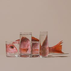 Foods Distorted Through Liquid and Glass in Photographs by Suzanne Saroff - In her ongoing series titled Perspective, photographer Suzanne Saroff creates fractured and skewed - Glass Photography, Reflection Photography, Still Life Photography, Creative Photography, Perspective Photography, Object Photography, Photography Ideas, A Level Photography, Perspective Art