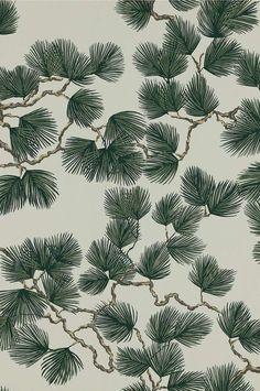 Pine by Sandberg - Green - Wallpaper : Wallpaper Direct Forest Wallpaper, Tree Wallpaper, Flower Wallpaper, Pattern Wallpaper, Green Nature Wallpaper, Dark Paint Colors, Interior Wallpaper, Art Nouveau Design, Inspirational Wallpapers