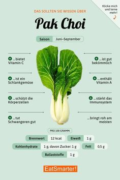 Pak choi - Veganismus - Infos, Tipps & Wissen - recipes and nutrition and drinks recipes recipes celebration diet recipes Nutrition Holistique, Holistic Nutrition, Nutrition Education, Complete Nutrition, Nutrition Store, Mineral Nutrition, Broccoli Nutrition, Nutrition Activities, Nutrition Shakes