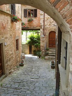We stayed in a villa near Greve in Chianti and wandered down many stone lanes like this.   Greve in Chianti, province in Florence Tuscany