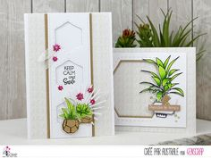 """Australe : Tampons & matrices de coupe (dies) #4enscrap """"Vamos a la playa"""" Keep Calm And Smile, Tres Belle Photo, Scrapbooking, Tampons, Cactus Plants, Flower Pots, December, Gift Wrapping, Inspiration"""