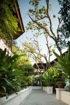 137 Pillars Hotel Landscape Design by P Landscape
