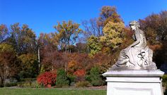 Cylburn Arboretum Association   Baltimore City's home for nature, education, & commnuity