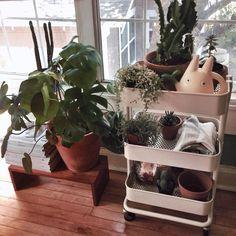 Ikea Raskog cart used for plants