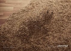 Novomed Print Advert By BBDO: Hidden Allergy | Ads of the World™