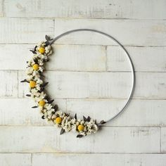 Modern hoop wreath scandi floral wreath with preserved eucalyptus and craspedia balls wall hanging m Wedding Wall Decorations, Floral Hoops, Decorative Hooks, How To Preserve Flowers, Seasonal Decor, Holiday Decor, Flower Crafts, Flower Crown, Dried Flowers