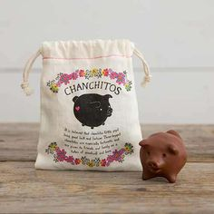 Chanchitos - This lucky little pig is so cute! It is believed that chanchitos (little pigs) bring good luck and fortune.