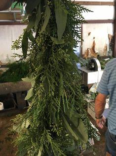 Leyland Cypress and Seeded Eucalyptus Garland Magical Christmas, Christmas Love, Christmas Holidays, Office Christmas, Christmas 2019, Christmas Greenery, Rustic Christmas, Christmas Wreaths, Eucalyptus Garland
