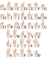 Buy Sign Language A To Z Numbers Hands Pack by LironPeer on GraphicRiver. Vector illustrations pack of sign language ABC and numbers. Sms Language, Sign Language Phrases, Sign Language Alphabet, American Sign Language, Language Lessons, Learn Sign Language Free, English Sign Language, Australian Sign Language, Baby Sign Language Chart