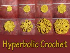 hyperbolic crochet - would make a very nice shower puff...