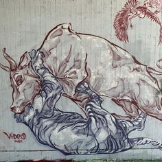 Wien, jetzt oder nie! 4/9 . Grafitti-Momente von Wiener Donaukanal. Kostenloses eBook über die Donaumetropole: www.yumpu.com/s/bwFfCdUnQc2g4SRB   #vienna #austria #welovevienna #viennanow #österreich #streetart #art #artist #urban #streetphotography #graffitiart #travel #photooftheday Graffiti Art, 360 Grad Foto, Street Photo, Ebooks, Pictures, Tourism, Destinations