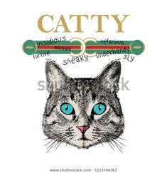 Catty Slogan Tshirt Printing Design Various Stock Vector (Royalty Free) 1223704363 Fashion Illustration Face, Print T Shirts, Cat Vector, Slogan Tshirt, Scarf Design, Arte Pop, Galaxy Wallpaper, Textile Design, Pop Art