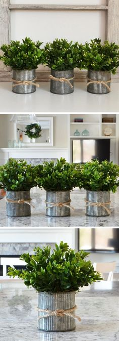 Best Farmhouse Indoor Plant Decor Ideas & Designs For 2019 – Farmhouse Decor Outdoor Planet Decor, Mason Jar Planter, Greenery Decor, Flower Pot Design, Decoration Plante, Indoor Planters, Faux Plants, Gardening Tips, Sustainable Gardening