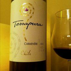 Terrapura 2009 Carmenere (Colchagua, Chile)
