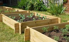 The Chamberlain Wooden Raised Grow Bed - 1m x 1m £14.95
