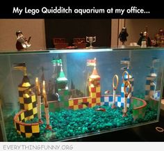 Best aquarium ever