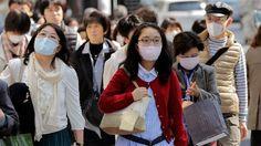 Le Japon crée l'arbre anti-pollen!