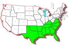 Here's a quick geography lesson for everyone: What's highlighted in green represents where everyone who values a good time, relaxed atmosphere, good football, great music, nice people, and sweet tea needs to reside.  Welcome to the South.