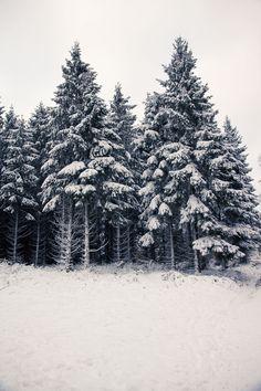 ⛄Traumhafte Winterlandschaft: So schön ist das Sauerland im Winter (Teil 1) - Hennen Arts #sauerland #fotografbochum #kälte #schneeflocken #bäume