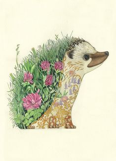 Hedgehog design from artist Daniel Mackie, whose watercolor collection is made into a greeting card line, the DM Collection. See his work at www.ArtsyShark.com