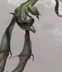 Wyvern --- Flying dragon by jaem - Jaemin KIM - CGHUB