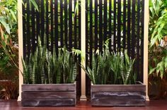 Bali Style Retreat - asian - landscape - sydney - by ecodesign Pty Ltd Asian Landscape, Landscape Design, Garden Design, Balinese Garden, Bali Garden, Garden Bed, Outdoor Plants, Outdoor Decor, Outdoor Spaces