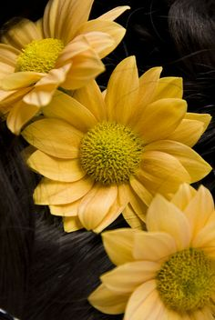 #yellow #flowers for your hair