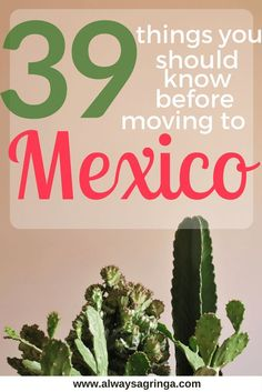 39 things I have learned since moving to Mexico and wish I would have known before. From daily life, to driving, to culture. Travel in North America. Cozumel, Puerto Vallarta, Cabo San Lucas, Travel Advice, Travel Tips, Travel Destinations, Travel Ideas, Travel Abroad, Travel Hacks