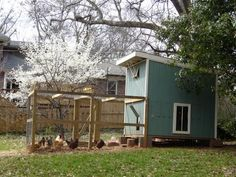 Chicken Coops for Backyard Flocks | Landscaping Ideas and Hardscape Design…