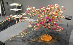"""Fleurop - Interflora World Cup Berlin Day 1. The first task, """"100% personal"""" was all about the finalists' personalities. Check out this design by Kristine Lyngsaa from Denmark, making off and interview on www.flowerweb.com..."""