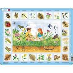 Larsen Field with Flowers & Insects Puzzle 48 pcs 024401 Kids Garage, Flower Names, Hand Knitted Sweaters, Plant Species, Plush Animals, Creative Thinking, Fine Motor Skills, Kids Learning, Hand Knitting