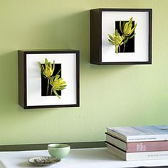 Turn a shadow-box frame into a vessel for your favorite things from the garden or flower shop.  Flowers or cuttings ― such as these leucadendron blooms ― extend through the opening of a picture mat to create an organic work of 3-dimensional art.  Group two or three frames on the wall or use one for a tabletop display. Change the background and cuttings for a new look any time you like.
