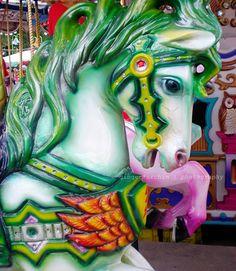 pretty carousel horse ❤