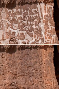 Engravings in the Saudi desert may be the earliest depictions of human-canine companionship.